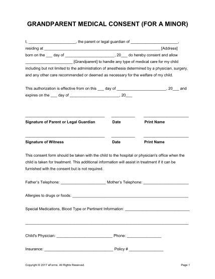 101999180-grandparent-minor-child-medical-consent-formpdf-grandparent-medical-consent-form