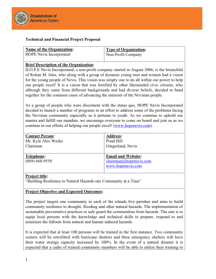 521064442-technical-and-financial-project-proposal-template