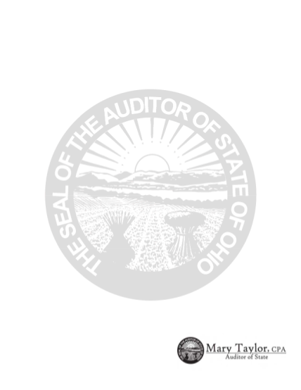 6478338-martins-ferry-park-district-auditor-state-oh
