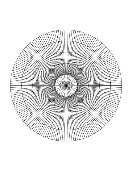 700398298-polar-180-spoke-radians-graph-paper
